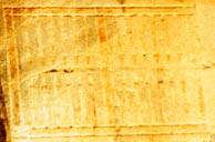 image 194 x 128